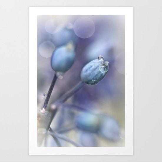 Underneath A Blue & Cloudless Sky ... Art Print