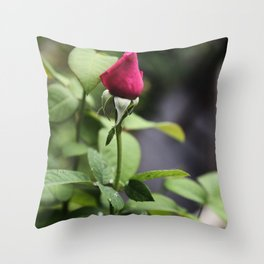 Death is the Culmination of Life Throw Pillow