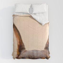 Creeper Of My Soul Comforters