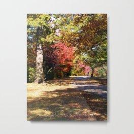 Autumn along the Fens in Boston Metal Print