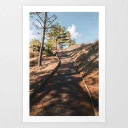 November in California Art Print