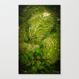 Ubud Rice Fields From Above Canvas Print
