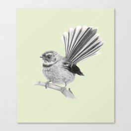 Piwakawaka   NZ Fantail Canvas Print