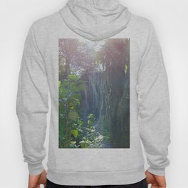 Florida Waterfall Landscape Hoody