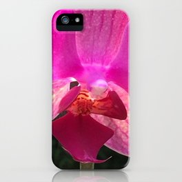 Fuschia Orchid Flower Blossom from Jalisco Mexico iPhone Case