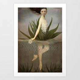 Waterlily Art Print