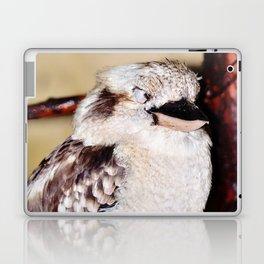 Sleeping Kookaburra Laptop & iPad Skin