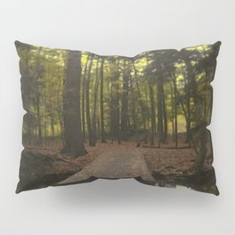 Mystic and Psychotic Same Waters Pillow Sham