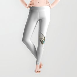 Hairless Cat Leggings