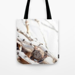 Drifted Palm Tote Bag