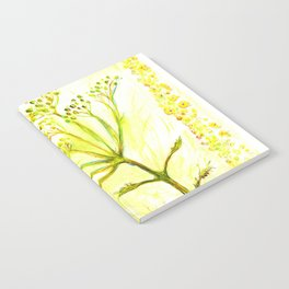 Tansy and Great mullein Notebook