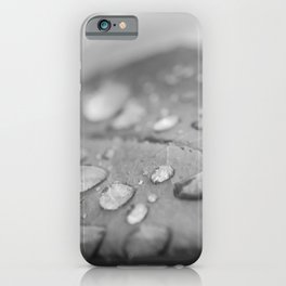 Dew on Leaf of Rose Plant - Black and White - Floral / Botanical Nature Photo iPhone Case