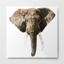 Elephant Geographic Head Illustration Metal Print