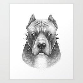 Pitbull Art Print