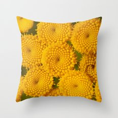 Birth of the  SUNS 5137 Throw Pillow