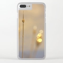 Peaceful Autumn Sunset At The Lake Clear iPhone Case