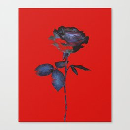Enhancing the Ordinary (In red) Canvas Print