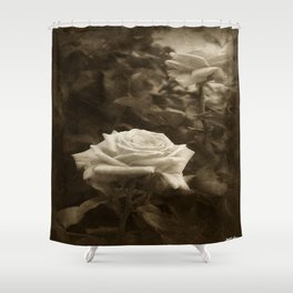 Pink Roses in Anzures 5 Antiqued Shower Curtain