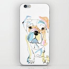 Bulldog Colour iPhone Skin