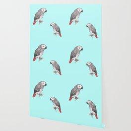 Cute African grey parrot Wallpaper