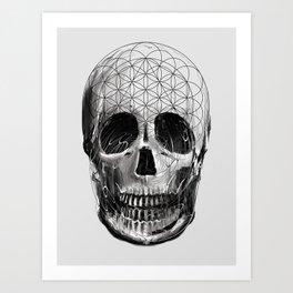 Sacred Skull Art Print
