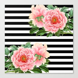 Pink Peonies Black Stripes Canvas Print