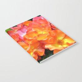 A Glorious Rambler Notebook