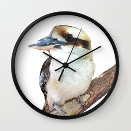 Kookaburra sitting in a tree Wall Clock
