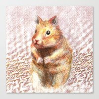 hamster Canvas Prints featuring hamster by dace k