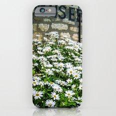 Museum & wild flowers - France iPhone 6s Slim Case