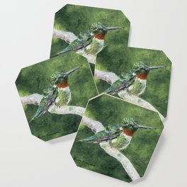 Romeo the Hummingbird by Teresa Thompson Coaster