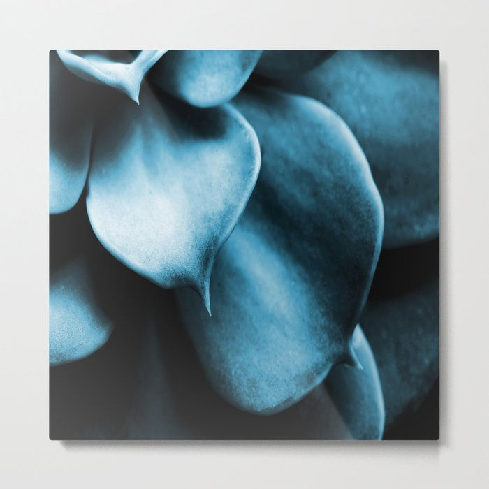 Succulent Leaves In Turquoise Color #decor #society6 #homedecor Metal Print