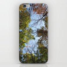 Autumn Vibrance iPhone Skin