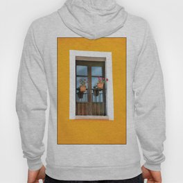 Balconies of Puebla  Hoody