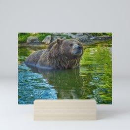 Brown bear in water Mini Art Print