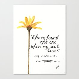 Song of Solomon 3:4 - yellow daisy Canvas Print