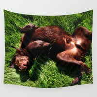 charlie Wall Tapestries featuring Charlie Bear by Rachel's Pet Portraits