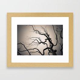 Chrome Tree Framed Art Print