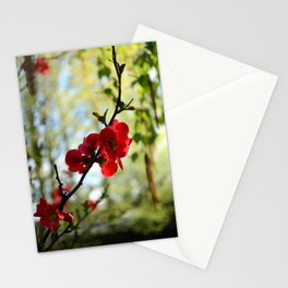 Bold Red Flower Stationery Cards