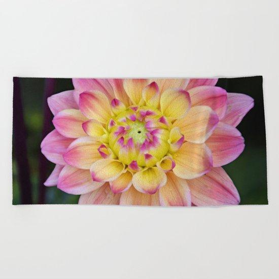 Pink Yellow Dahlia Close up Beach Towel