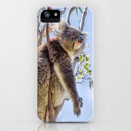 Koala iPhone Case