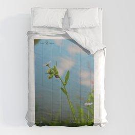 Climbing Comforters