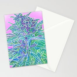 Magenta Harvest Art Medford Oregon 2019 LizzieFaye La Jolla Stationery Cards