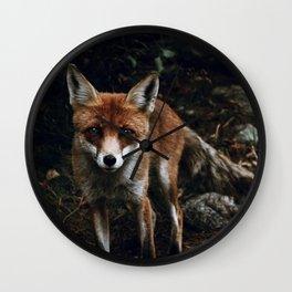 Curious Fox II Wall Clock