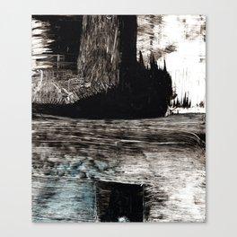 film No13 Canvas Print