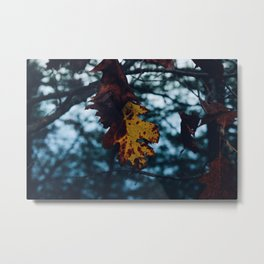 Natural mood Metal Print