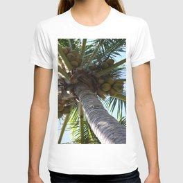 Coconut Palm T-shirt