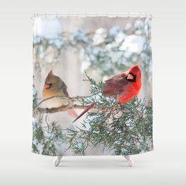 Remembering.... (Northern Cardinals) Shower Curtain