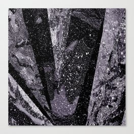 Glitter Silver Star Gaze Black White Retro Vintage Canvas Print