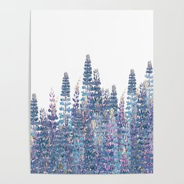 Lupine Love Poster